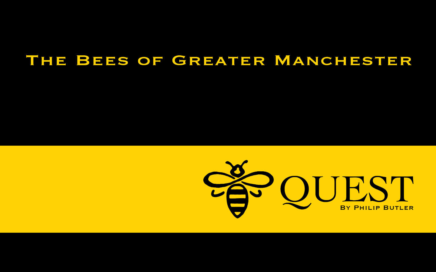 Bee Quest The Bees of Greater Manchester by Manchester based website developer Philip Butler