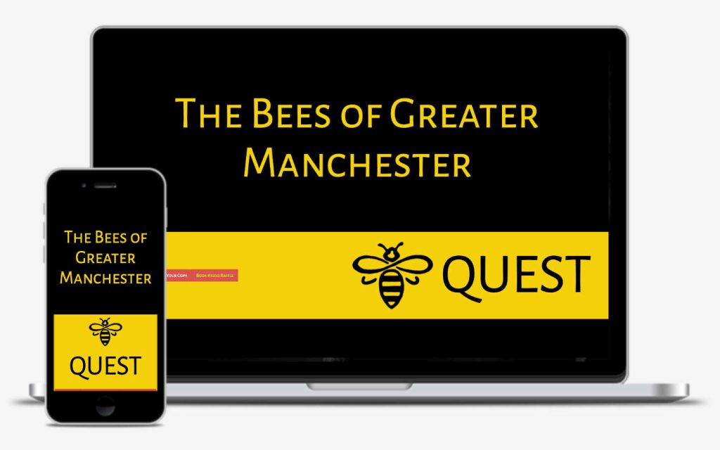 manchester website developer portfolio - beequest