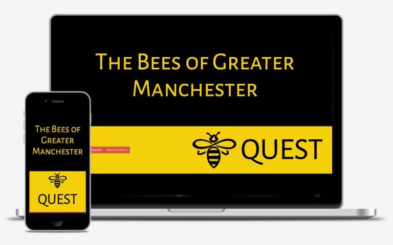 manchester website developer portfolio - beequest