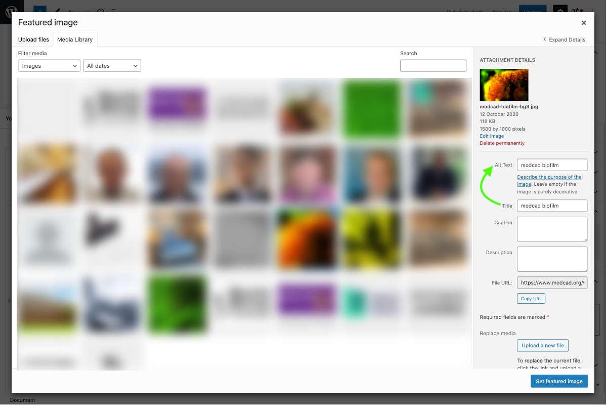 wordpress document settings featured image